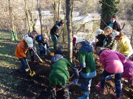 Vaihinger Minigärtner pflanzen Bäume