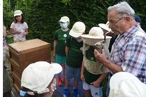 Vaihinger Minigärtner gehen imkern
