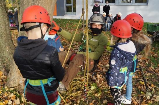 Minigärtner auf dem Baum(pflegeportal)